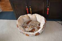 Small Leopard/Tiger Skin type fabric-Dog Bed Suit Chihuahua Size Ashfield Ashfield Area Preview