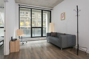 Beautiful and Modern 1 BR in Condo