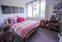 Spacious Zetland Pad - Room For Rent ( Pet Friendly) Zetland Inner Sydney Preview