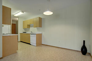 FREE NOV RENT!Beautiful 2bdrm in University Heights Only $1,130!