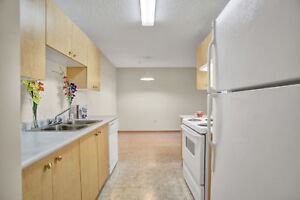 $500 OFF! Bright 2 Bed in Lakewood with in-suite laundry!