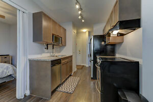 Fully Furnished One Bedroom plus Den, Close to Whyte Avenue