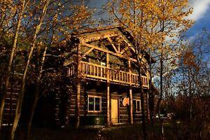 Large 4 bedroom log house for rent