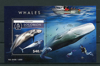 Solomon Islands 2015 MNH Whales 1v S/S Marine Animals False Killer Whale Stamps