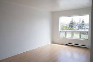 PREFERED LOCATION DOWNTOWN AYLMER