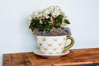 Ivyline Butterfly Extra Large Teacup & Saucer Planter Plant Pot Flower Pot 25cm
