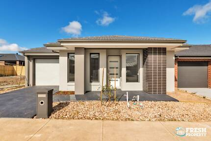 Brand New 3 Bedroom Cosy Home for Rent