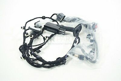 Range Rover Velar Rear Right Hand Door Wiring Harness LR094947 Genuine