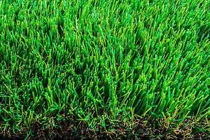 Artificial Turf Synthetic Grass Fake Lawn Landscaping Melbourne CBD Melbourne City Preview