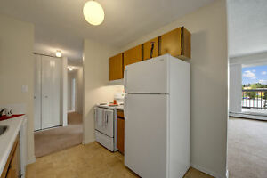 Brand New Carpet- 2 bedroom-E-202...Available For You....