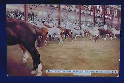 1914 POSTCARD DRAFT HORSES ORIGINAL COLISEUM STATE FAIR INDIANAPOLIS IN.