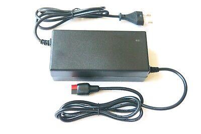 Cargador de Batería para Go Kart - Solo Batería Estándar de Plomo...