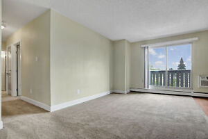 Renovated 2 Bdrm Apartment Available - Free April Rent