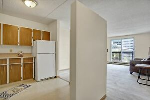 Great Downtown 1 BR Apartment! Gym, Elevator, Roof Top Patio