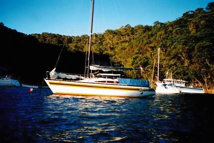 Sonata 8 trailer sailer