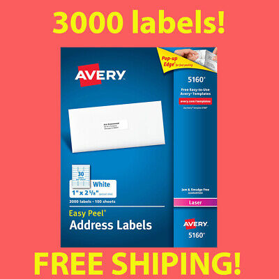 1 Box Of 3000 Avery 5160 Address Mailing Shipping Labels 1 X 2 58 Free Ship