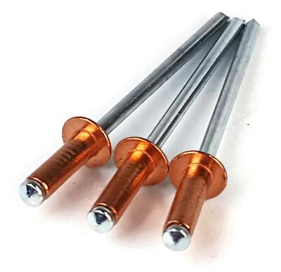 "Copper POP Rivet Blind Rivets - 4-4 #44, 1/8"" (0.188 - 0.250 Grip) Qty-100"