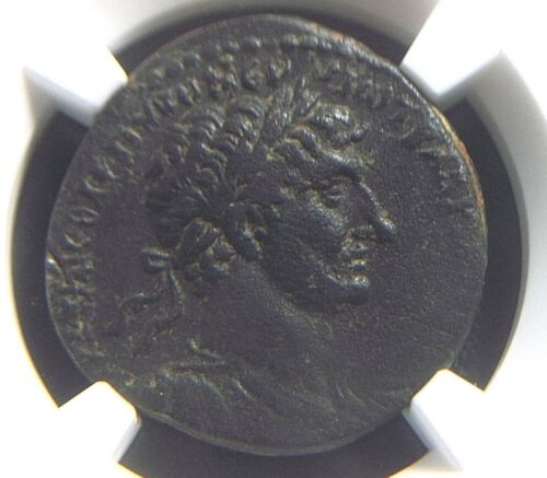 Roman Provincial coin AE25 of Emperor Hadrian from Antioch NGC XF 7009