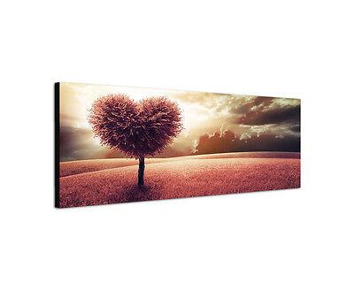 120x40cm Wandbild Love Baum Herzform Rote Felder Leinwand Panorama Sinus Art