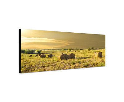 Heu Ballen Dekorationen (120x40cm Heuballen Panorama Toskana Italien Farm Felder Wiese Leinwand Sinus Art)