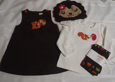 GYMBOREE Girls 12-18 Month Fall for Autumn Shirt Dress Leggings Hat Outfit NWT