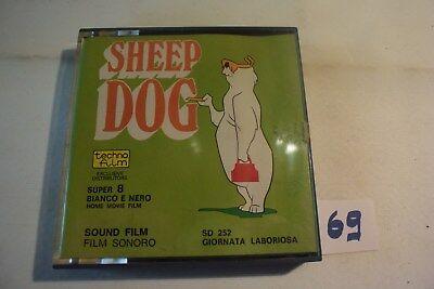 C69 Bande Super 8 - Sheep dog Giornata - film - bobine warner bros