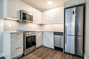 1 Bedroom  - Newly Renovated w/ In-Suite Laundry! Call today!