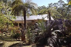 Tree Change Lorne Port Macquarie City Preview