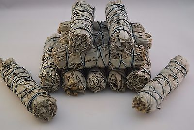 "California White Sage Smudge Incense 4"" Bundle (12 pcs)"