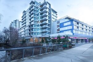 Spacious 1 bedroom -205-6200 River Road  Richmond  BC