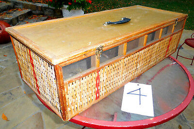 Old Wicker Screen Racing Pigeon 6 Bird Vtg Carrier Box Crate Cage Transport #4