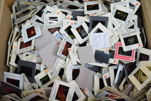 35MM Slide Pictures Lot of 100 Assorted Images History Classroom
