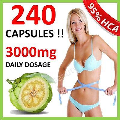 240 x 3000mg DAILY GARCINIA CAMBOGIA CAPSULES HCA 95% DIET O