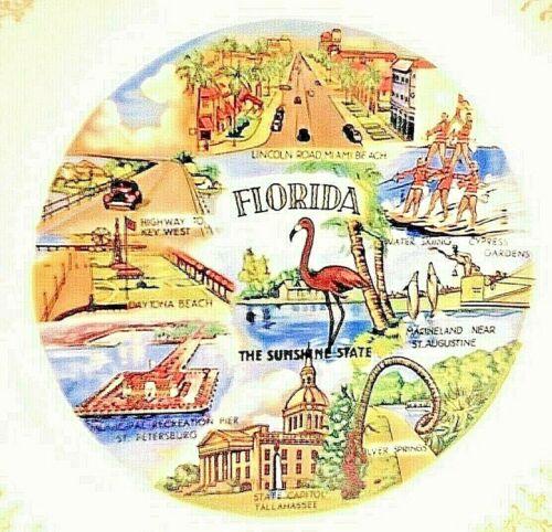 "State of Florida 9"" Plate Sunshine Miami Beach Flamingo"