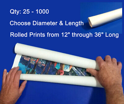 Clear 2mil Plastic 14 16 18 20 24 36 Bags Poster Art Prints Sleeves Maps Tubes