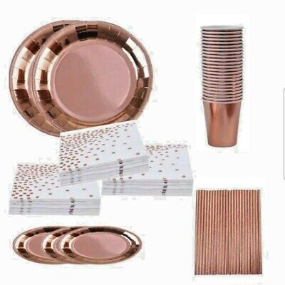 ~ ROSE GOLD PARTY ~ Tableware Set ~ Serves 16 ~ Plates, Cups, Napkins, Straws ~