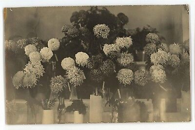 RPPC Bouquet of Wilting Flowers PA Adams Co CC Kuhn Real Photo Postcard - Wilting Flower