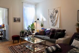 Sublet beautiful and quiet PLATEAU apt Jan to May/June 2019