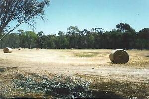 4.4 ACRES OF PICTURESQUE TRANQUILLITY. Keyneton Mid Murray Preview