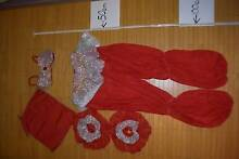 Red Arabian Style Dance Costume (Size 12/Child Large) Ryde Area Preview