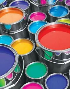 Experienced Painter Available