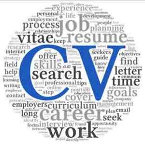 Affordable and Effective CV/Resume Sydney City Inner Sydney Preview