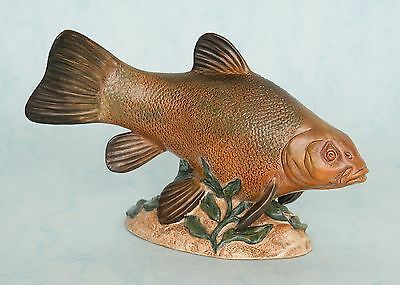 BESWICK MADE IN ENGLAND FISH - TENCH - NUMBERED LIMITED EDITION OF 500