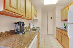 3BR Apartment Located Close to Schools, Buses, and the River Val