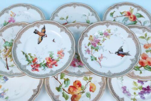 11 Paris Porcelain Cabinet Plates Flowers & Fruit Birds & Insects Mansard France