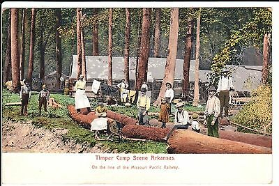 Early 1900's A Timper Camp Scene in AR Arkansas PC
