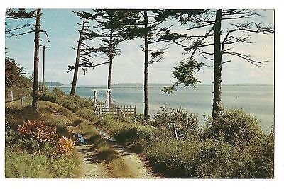 Admiralty Inlet (ADMIRALTY INLET Dirt Road From Whidby Island PUGET SOUND WASHINGTON Postcard WA)