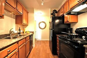 COZY RENOVATED 2 BEDROOM - SLEEK BLACK APPLIANCES