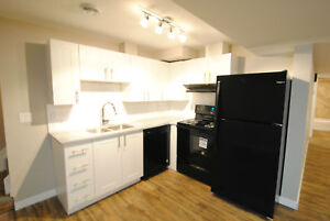 15028-67 St. - Brand New 2 bed 1 Bath Lower Suite!