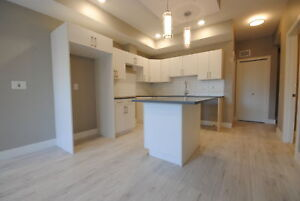 Executive 2 Bedroom Unfurnished Suite Just Off Whyte Ave